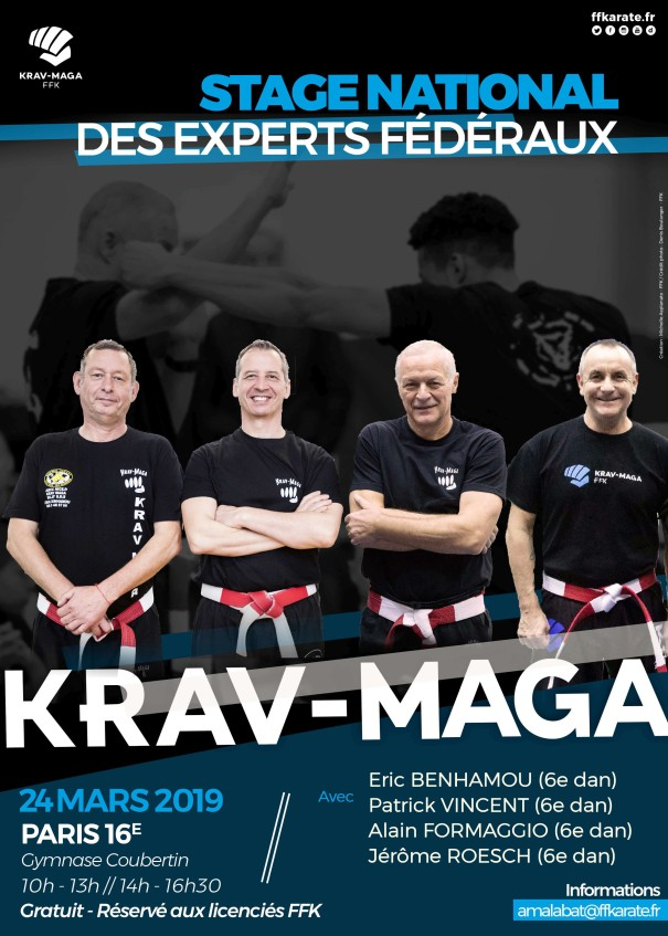 stage-experts-federaux-krav-maga2019.jpg